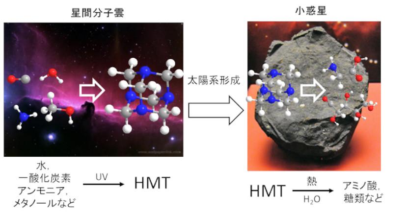 太陽系形成より古い有機分子を炭素質隕石から検出 ~ただ古いだけじゃない!太陽系に存在する有機物生成に不可欠な分子~